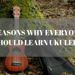 Reason why everyone should learn ukulele