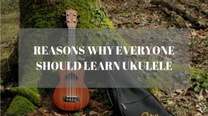 Reason why everyone should learn ukulele