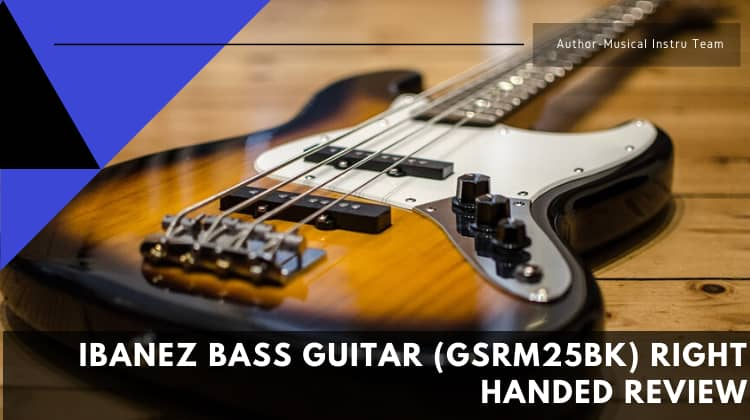 Ibanez Bass Guitar GSRM25BK Right Handed Review